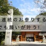 (愛媛)大山祇神社のパワースポット、3年連続のお参りで願いが叶う!