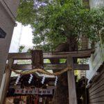 少彦名(すくなひこな)神社【参拝レポート】