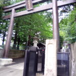 新宿諏訪神社【参拝レポート】