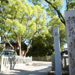 稲爪神社【参拝レポート】
