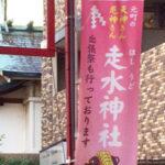 走水(はしうど)神社【参拝レポート】