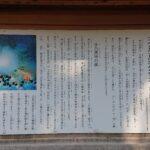 天岩戸別(あまのいわとわけ)神社【参拝レポート】