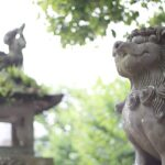 狛犬はなぜ置かれている?由来や歴史・見分け方まで徹底解説